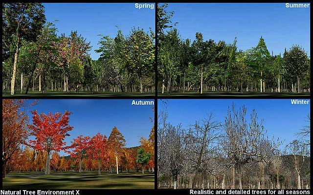 Natural Tree Environment